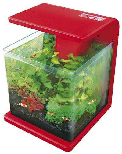 SuperFish Aquariums
